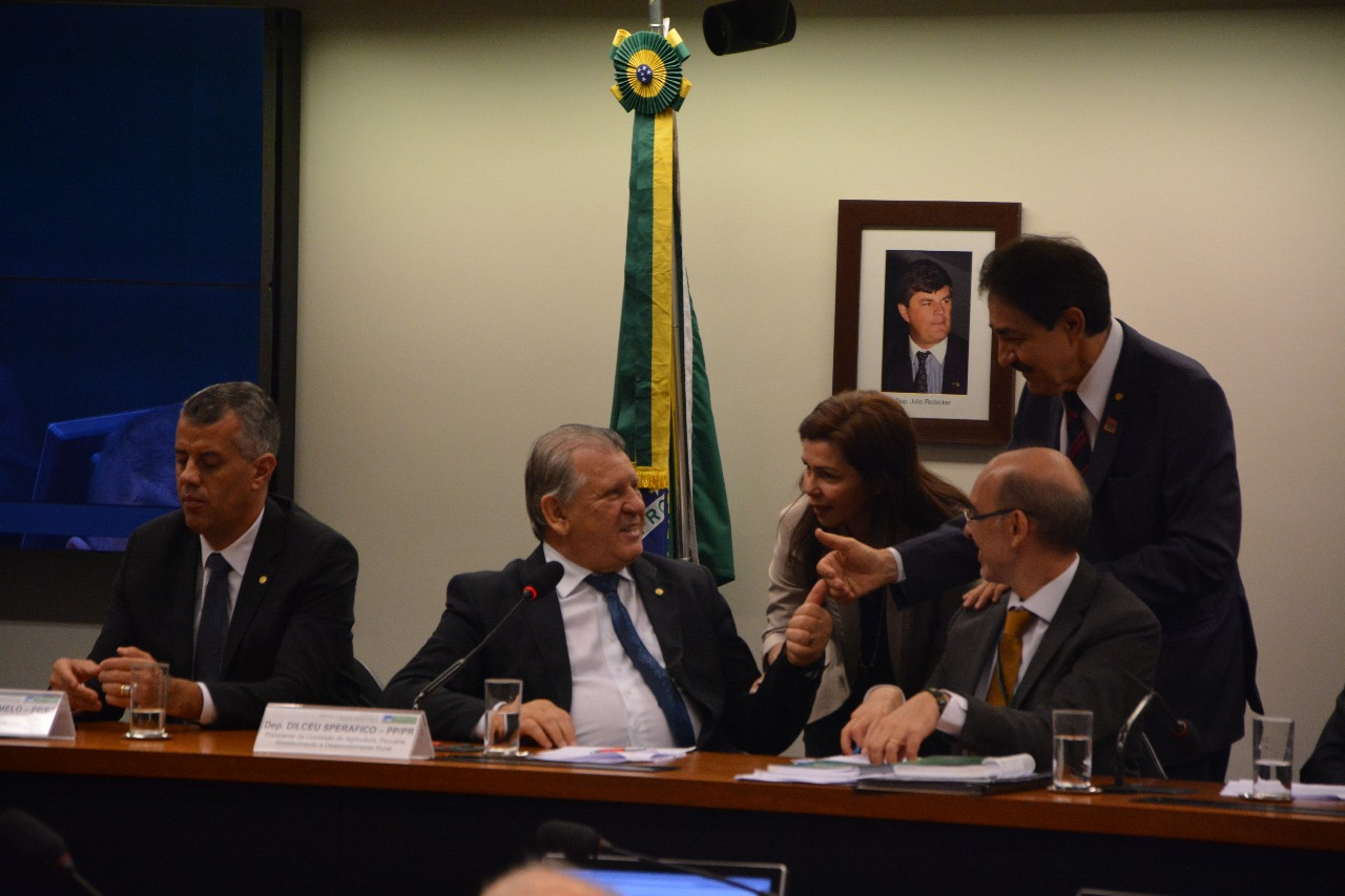 Deputada Conceição Sampaio articula sobre o PL que beneficia pescadores artesanais por meio do pirarucu de manejo